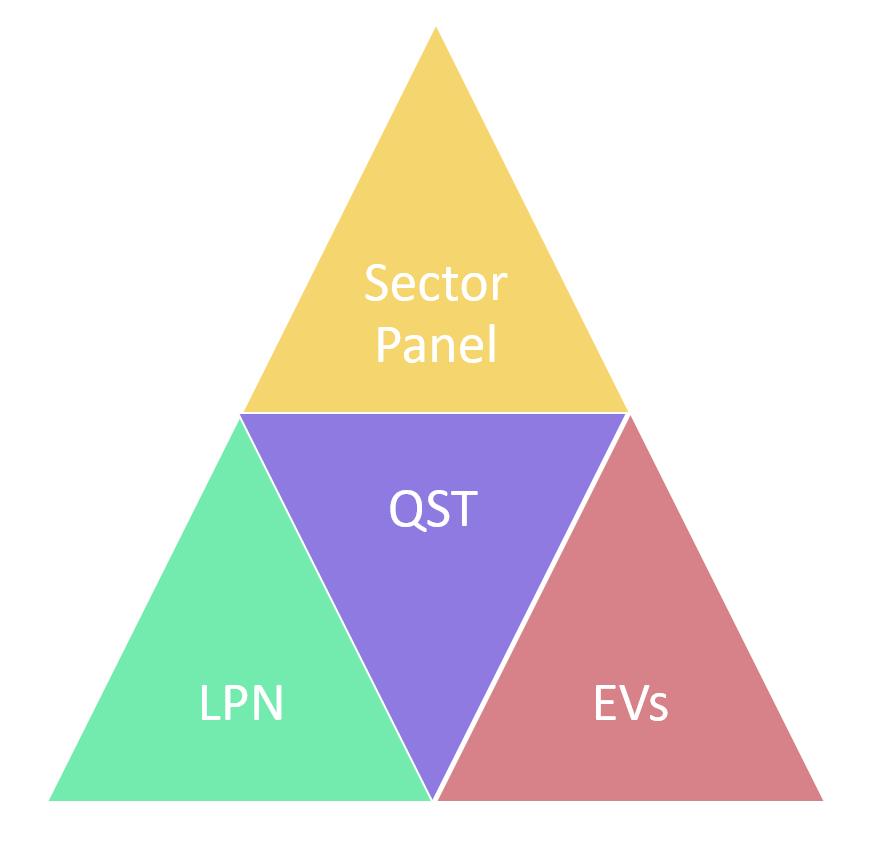 Lead Person Network LPN diagram